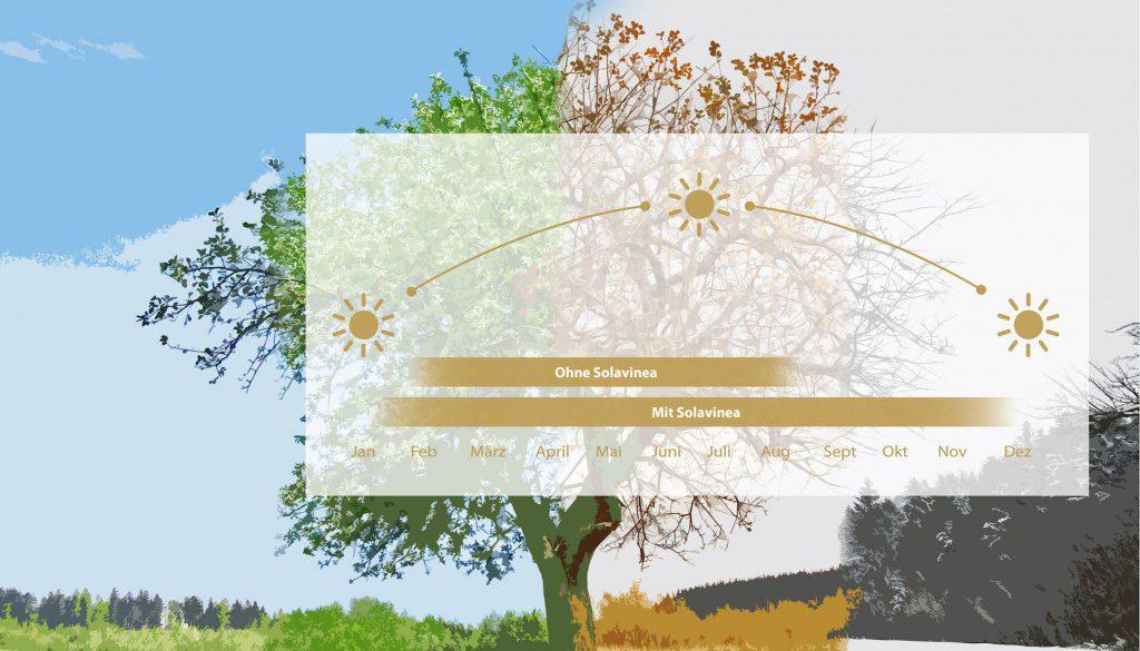 4_seasons_web